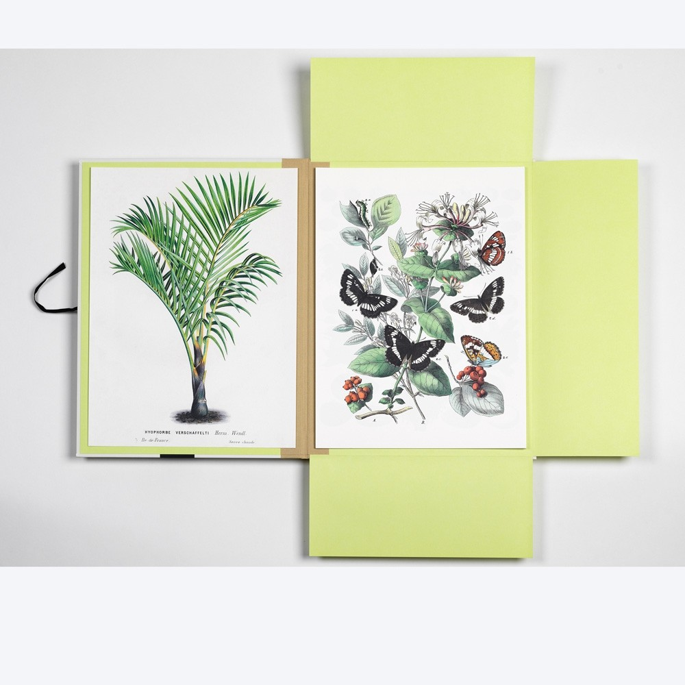 Pepin Press Art Print Portfolio Natural History