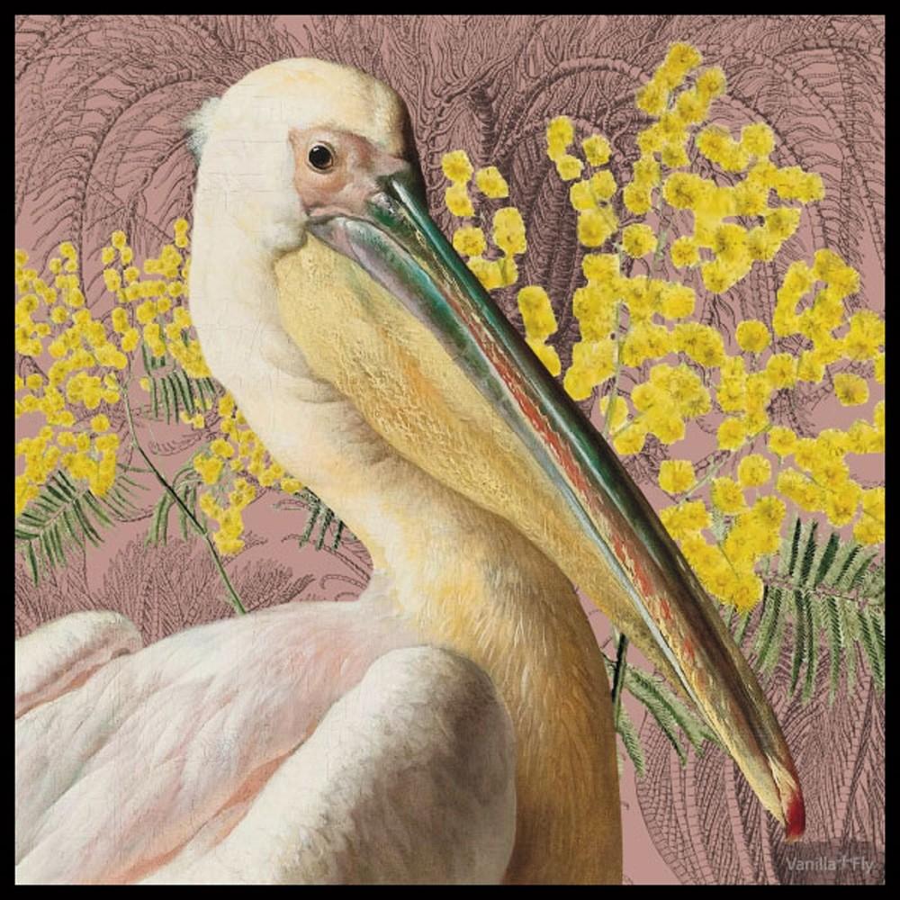 Vanilla Fly Pelican Print 50x50cm