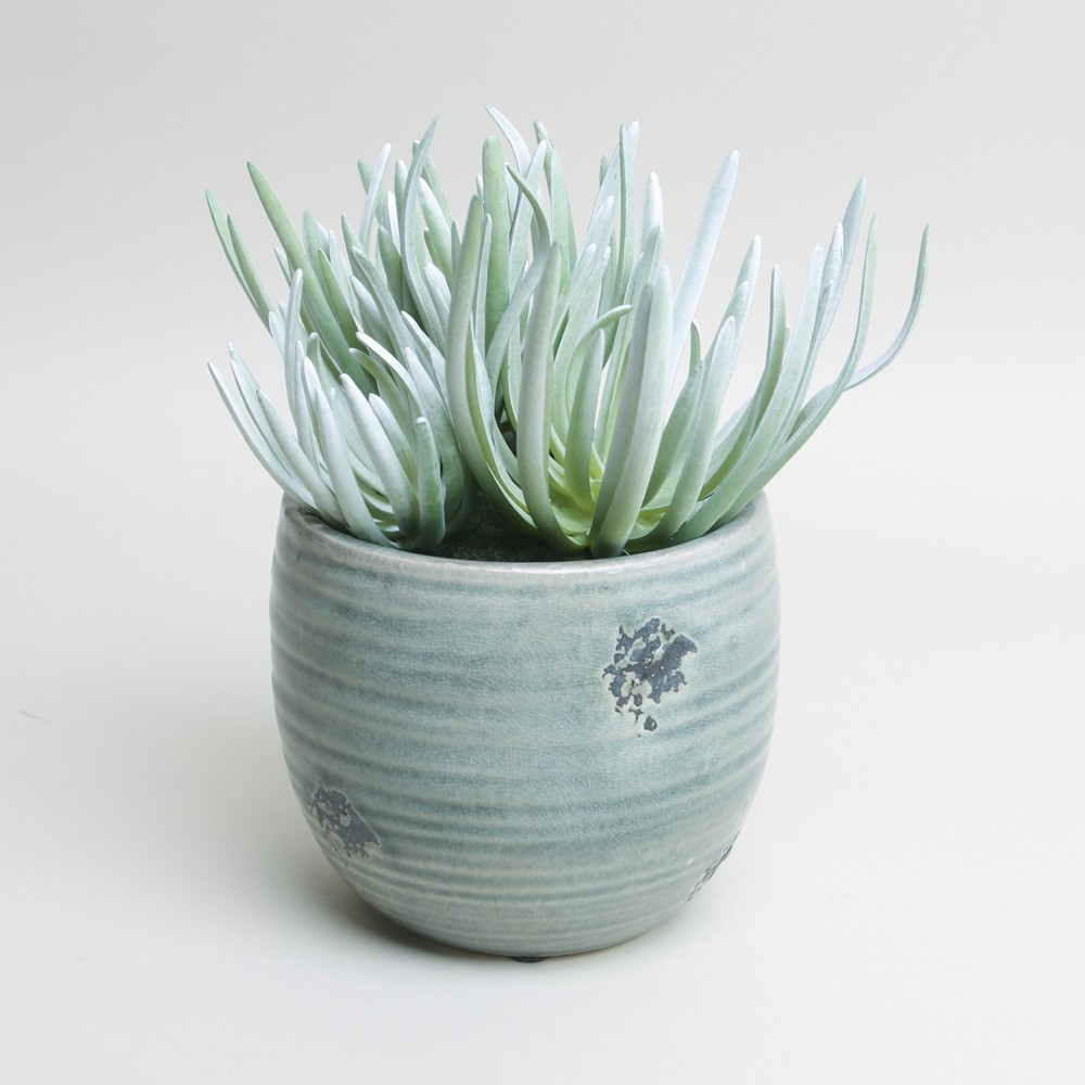 Grey/Green Glazed Pot with Faux Succulent